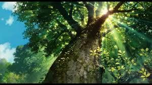 Leaf Cutter Wtich begins De Foresta Ritual